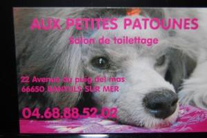 Toilettage pour chiens à Banyuls sur Mer